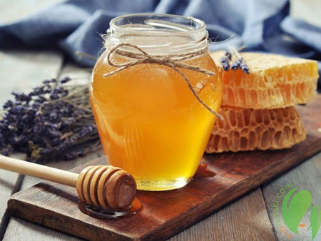 мед обладает полезными свойствами