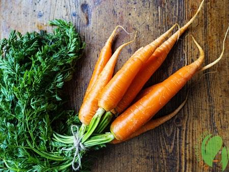 сорванная морковь