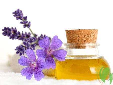 Польза герани для красивых волос и нежной кожи лица