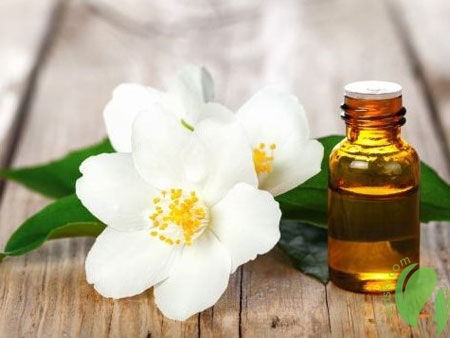 эфирное масло цветков жасмина для волос и кожи