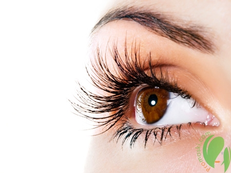 Масляное воздействие для чарующей красоты ресниц и бровей