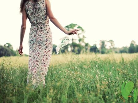 Душистые травы для ухода за волосами